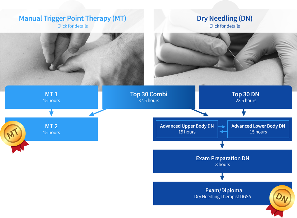Register for Dry Needling and Trigger Point Therapy Courses